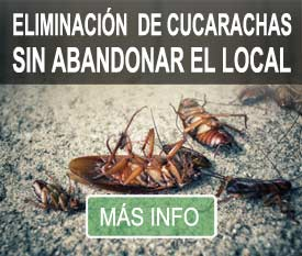 eliminar plaga cucarachas